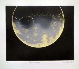 Moon Shadow, 235mm x 270mm, Relief & Carborundum. Edition 10