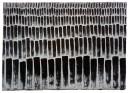 Night Stalks, 205mm x 295mm, Relief & Carborundum. Edition 5